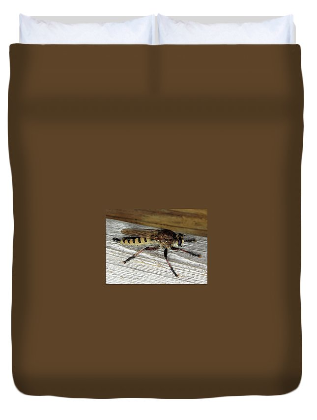 These Insects Look Scary Duvet Cover featuring the photograph Robber Fly by Kristin Elmquist