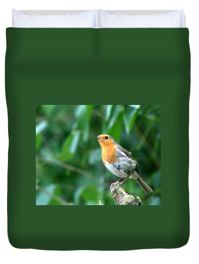 Robin Duvet Cover featuring the photograph Robun 2 by Chris Day