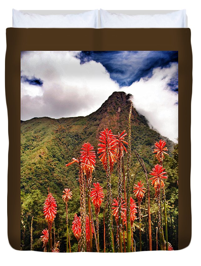 Rockets Red Glare Duvet Cover featuring the photograph Rocket's Red Glare by Skip Hunt
