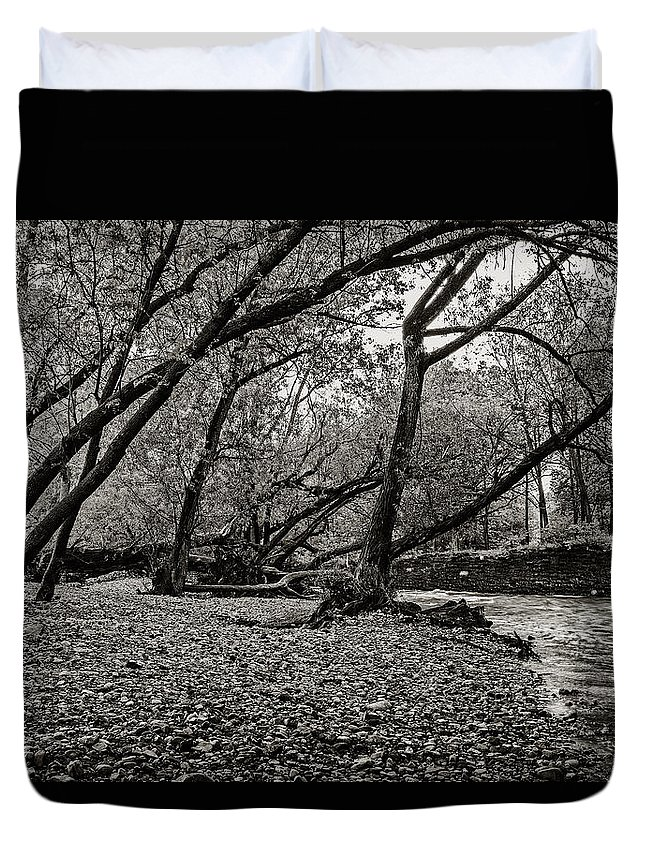 Cj Schmit Duvet Cover featuring the photograph Rooted Within The Gravel by CJ Schmit