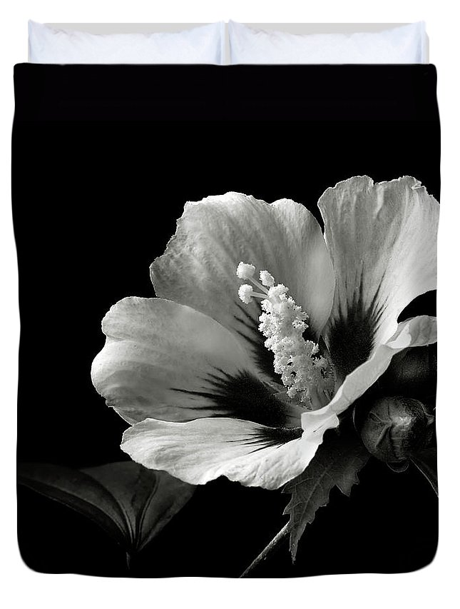 Flower Duvet Cover featuring the photograph Rose Of Sharon In Black And White by Endre Balogh