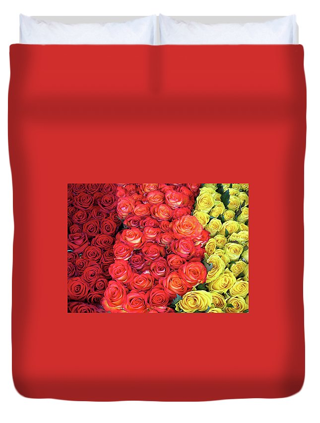 Rose Duvet Cover featuring the photograph Roses Roses Roses by Dave Mills
