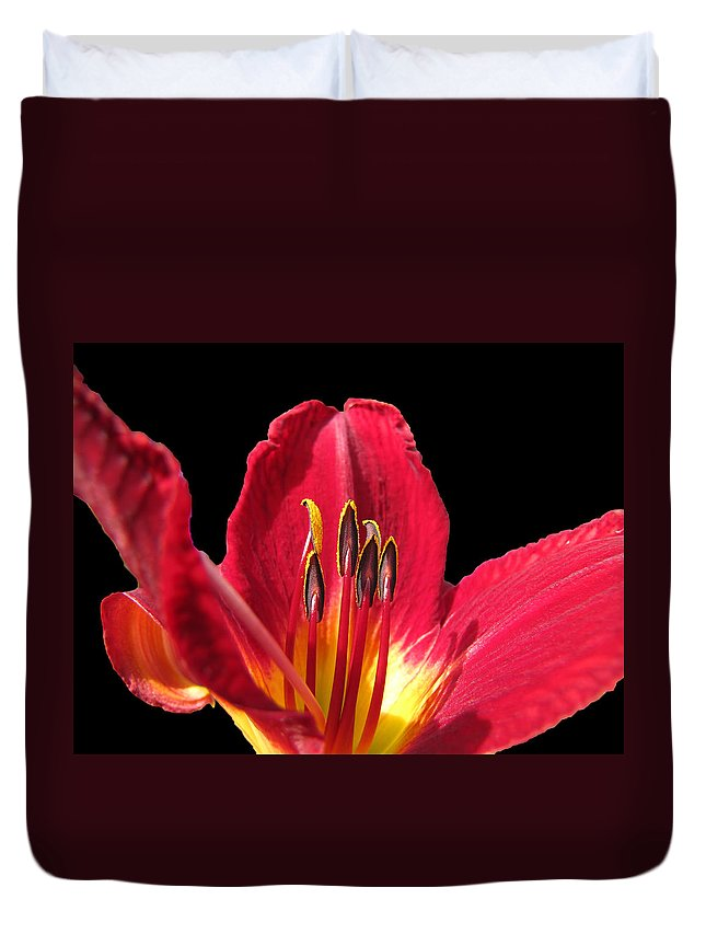 Nature Duvet Cover featuring the photograph Royal Red by Debbie Portwood