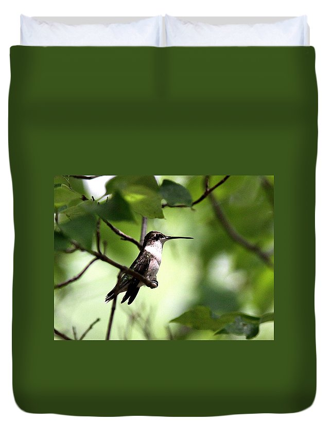 Hummingbird Duvet Cover featuring the photograph Ruby-throated Hummingbird - Shade by Travis Truelove