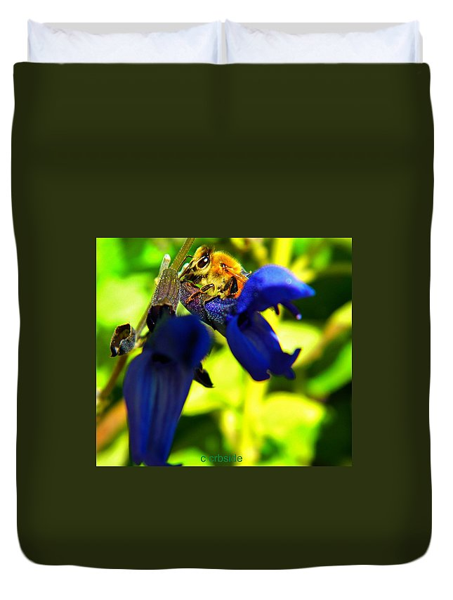 Sage Duvet Cover featuring the photograph Sage And Bee Number Two by Chris Berry