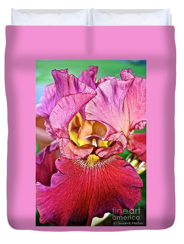 Outdoors Duvet Cover featuring the photograph Salmon Ruffles by Susan Herber