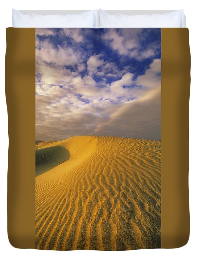 Light Duvet Cover featuring the photograph Sand Dune And Sky by Darwin Wiggett