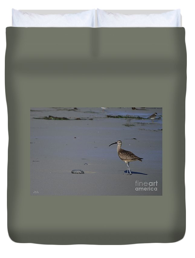 Sanderling Duvet Cover featuring the photograph Sanderling by Diego Re
