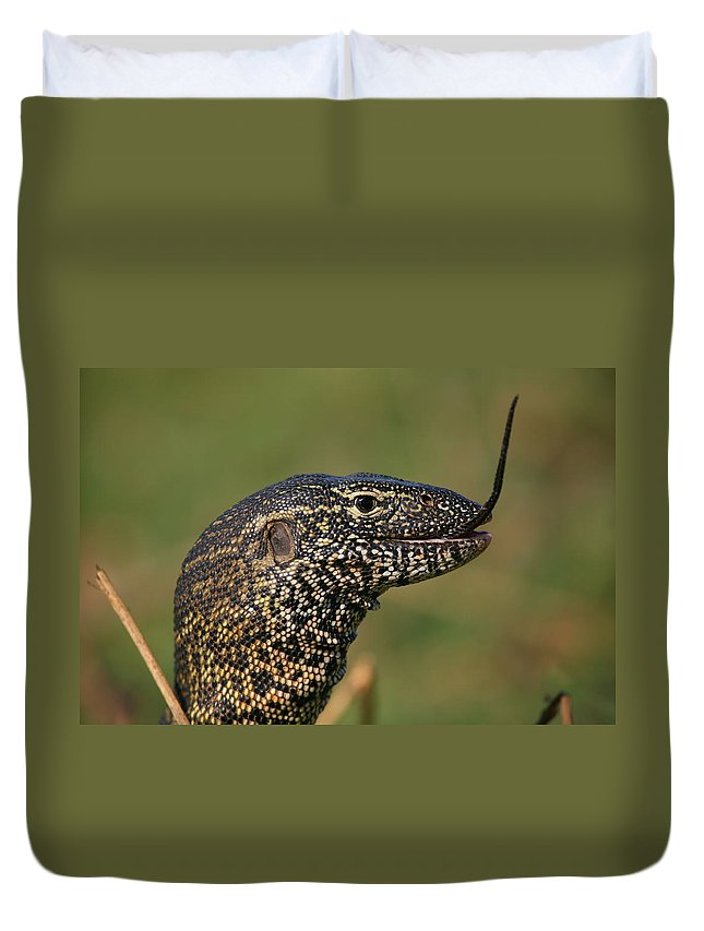 Monitor Duvet Cover featuring the photograph Scales For Breakfast by Bruce J Robinson
