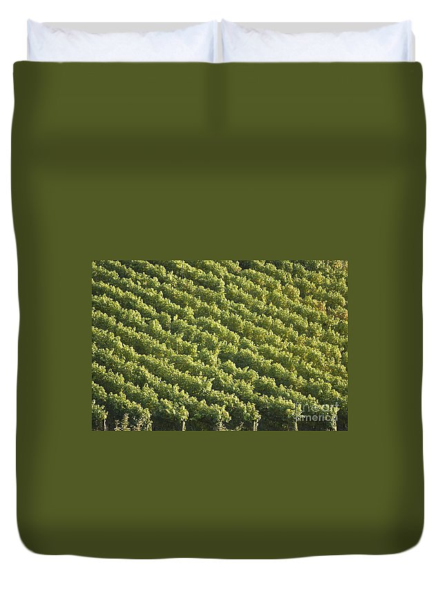 Alps Duvet Cover featuring the photograph Schlosswein by Alex Rowbotham