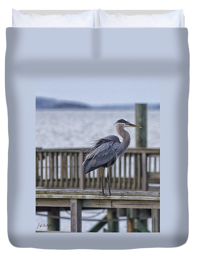 Beaufort County Duvet Cover featuring the photograph Scruffy Heron by Phill Doherty