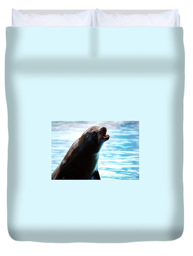 Animal Duvet Cover featuring the photograph Sea-lion by Carlos Caetano