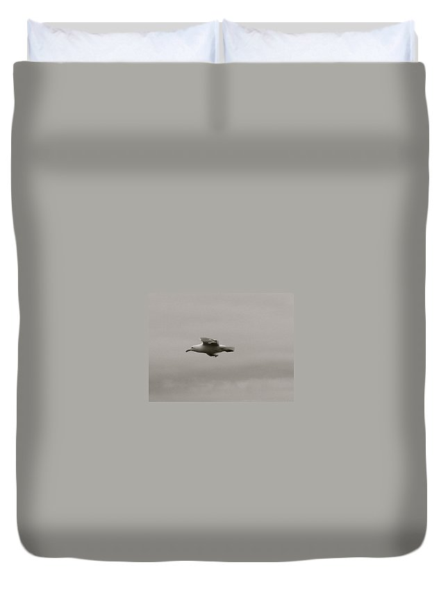 Seagull Duvet Cover featuring the photograph Seagull In Flight by Linda Hutchins