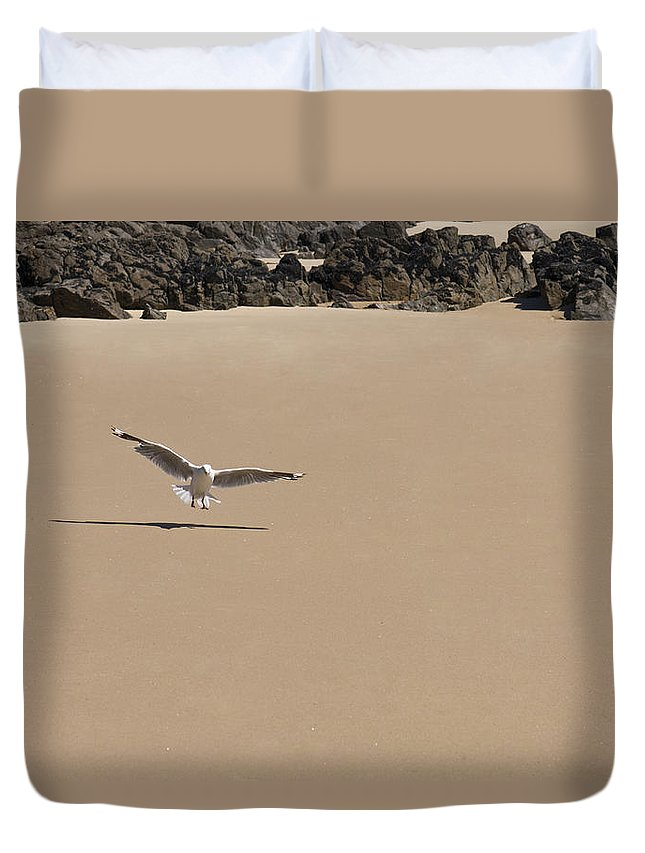 Animals Duvet Cover featuring the photograph Seagull Spreads Its Wings On The Beach by U Schade