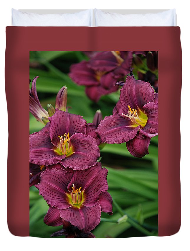 Flowers Duvet Cover featuring the photograph Seattle Blooms by Carol Eliassen
