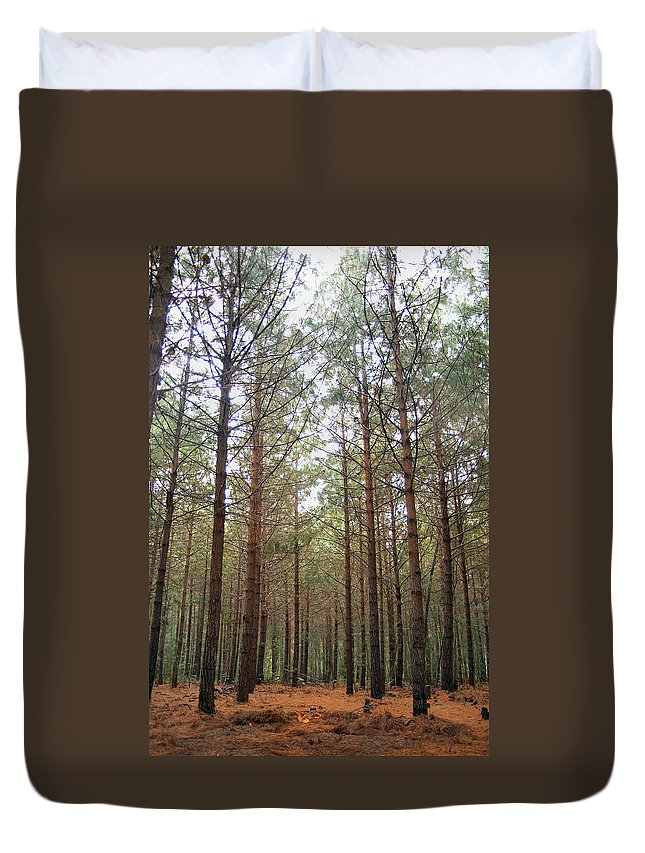 Pine Duvet Cover featuring the photograph Serene Forest by Tracey Beer
