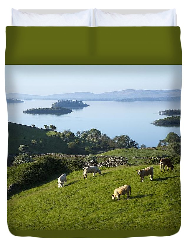 County Mayo Duvet Cover featuring the photograph Sheep Grazing By Lough Corrib Cong by Peter Zoeller