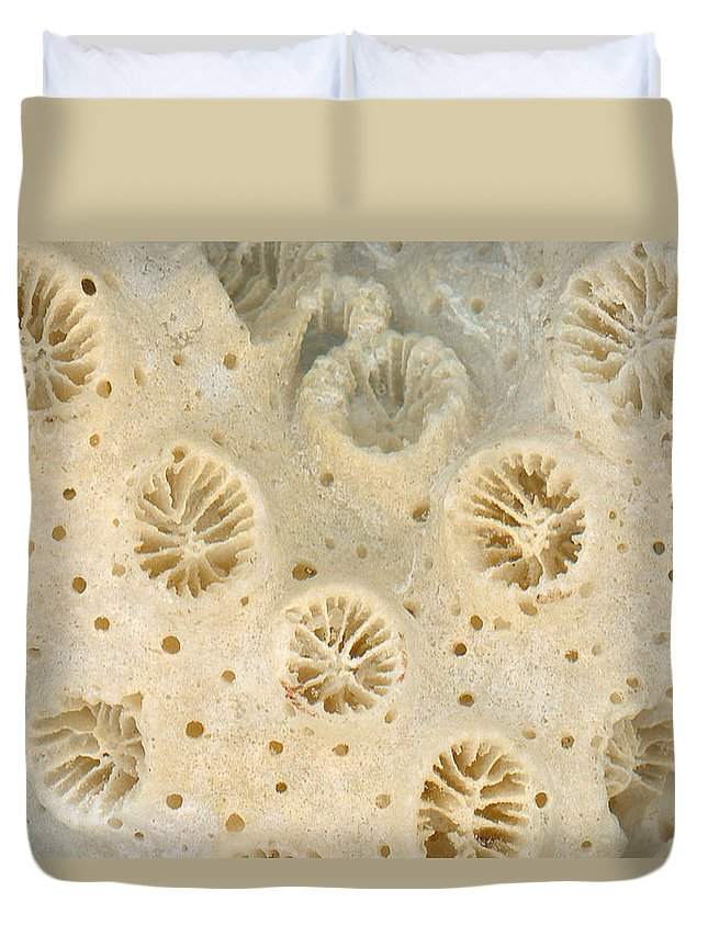 Macro Duvet Cover featuring the photograph Shell - Conchology - Coral by Mike Savad