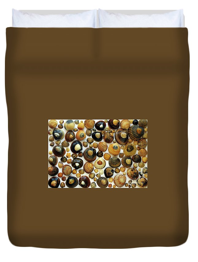 Aquatic Duvet Cover featuring the photograph Shell Background by Carlos Caetano