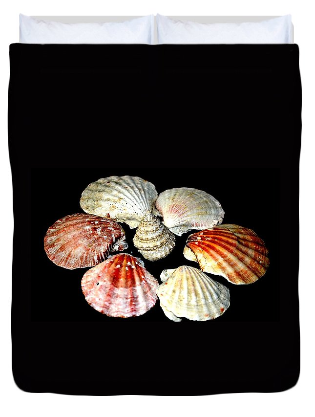 Shell Duvet Cover featuring the photograph Shell Flower by Maria Urso