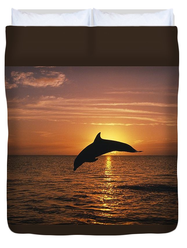 Horizon Duvet Cover featuring the photograph Silhouette Of Leaping Bottlenose by Natural Selection Craig Tuttle