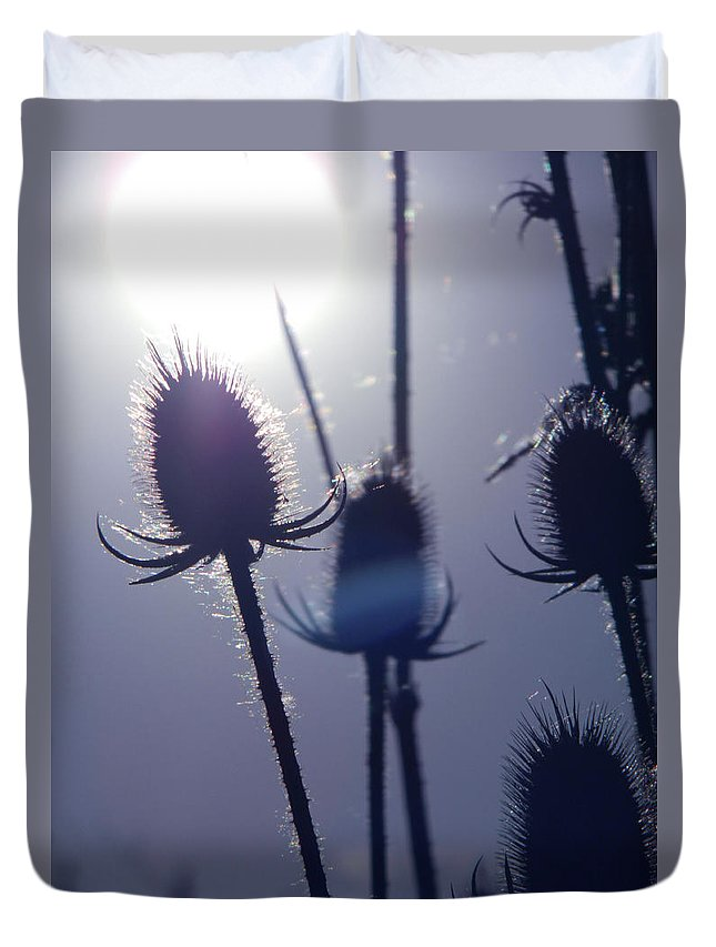 Silhouette Of Weeds Duvet Cover featuring the photograph Silhouette Of Weeds by Dawn Marshall