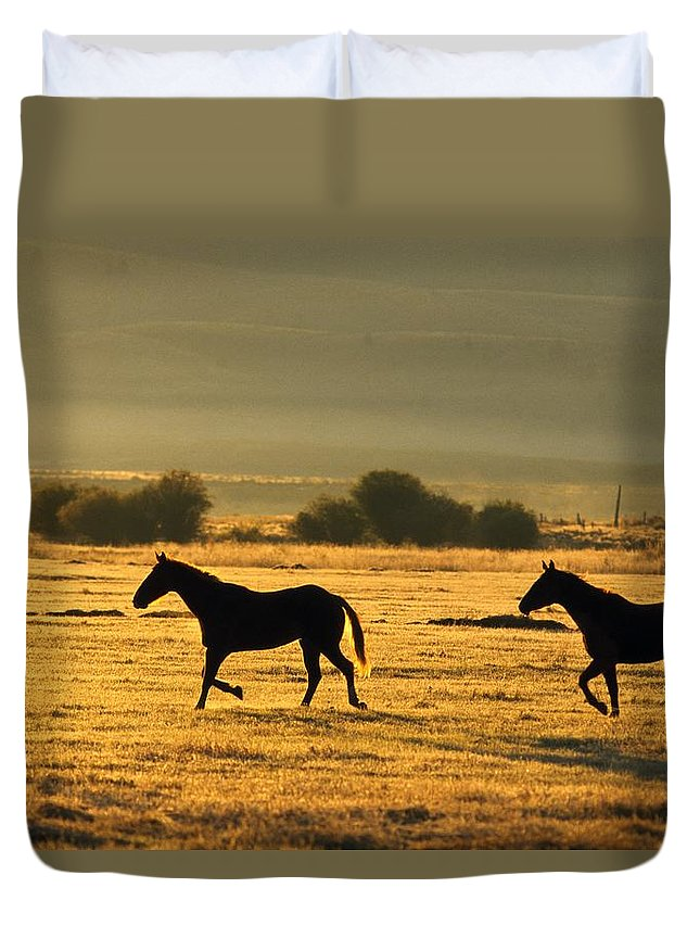 Freedom Duvet Cover featuring the photograph Silhouetted Horses Running by Natural Selection Craig Tuttle