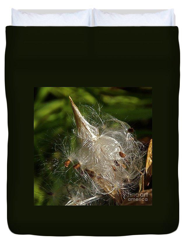 Milkweed Seed Pod Duvet Cover featuring the photograph Silky Milkweed by Byron Varvarigos