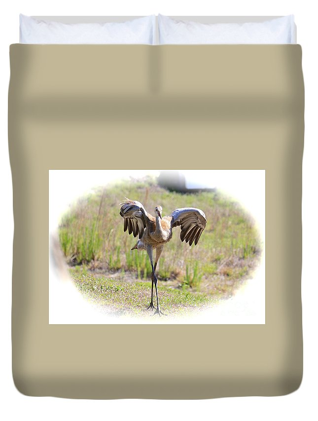 Sandhill Crane Duvet Cover featuring the photograph Silly Sandhill Crane Chick by Carol Groenen
