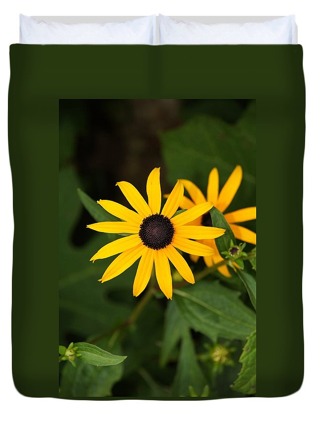 Flower Duvet Cover featuring the photograph Single Daisy by Megan Cohen
