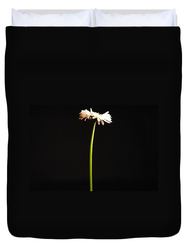 Single Duvet Cover featuring the photograph Single Flower by Sumit Mehndiratta