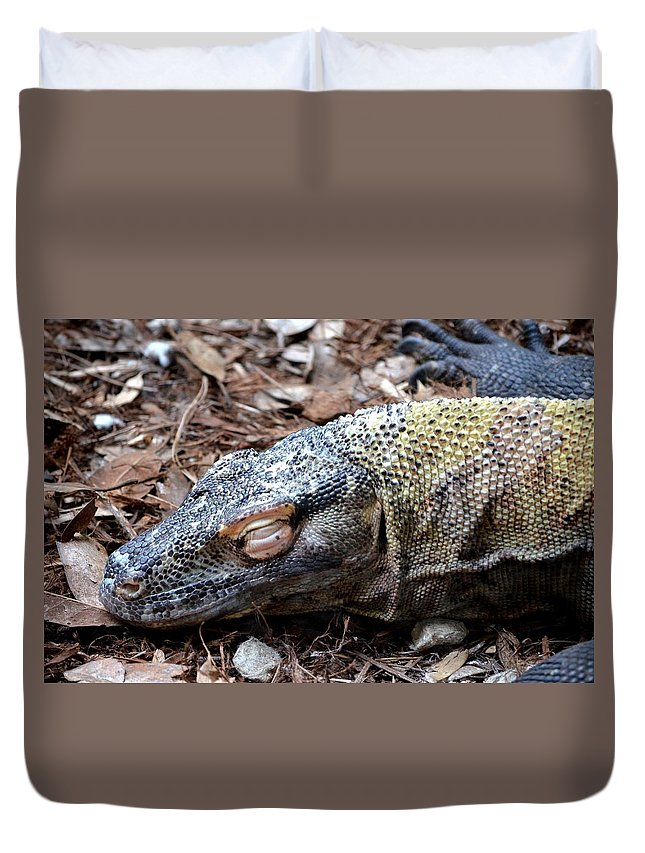 Sleeping Monster Duvet Cover featuring the photograph Sleeping Monster by Maria Urso