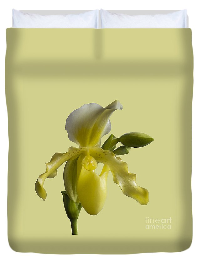 Orchid Duvet Cover featuring the photograph Slipper Orchid by Heiko Koehrer-Wagner