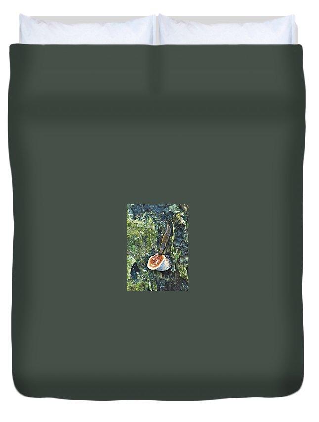 Alge Duvet Cover featuring the photograph Slug 7044 1674 2 by Michael Peychich