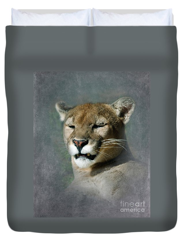 Mountain Lion Duvet Cover featuring the photograph Slumbering Mountain Lion by Betty LaRue