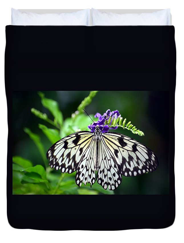 Butterfly Duvet Cover featuring the photograph Snack Time by Richard Ortolano