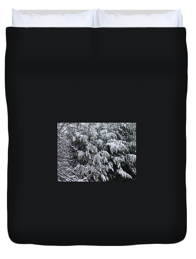 Snow Duvet Cover featuring the photograph Snowy Branches Winter by Ashok Patel