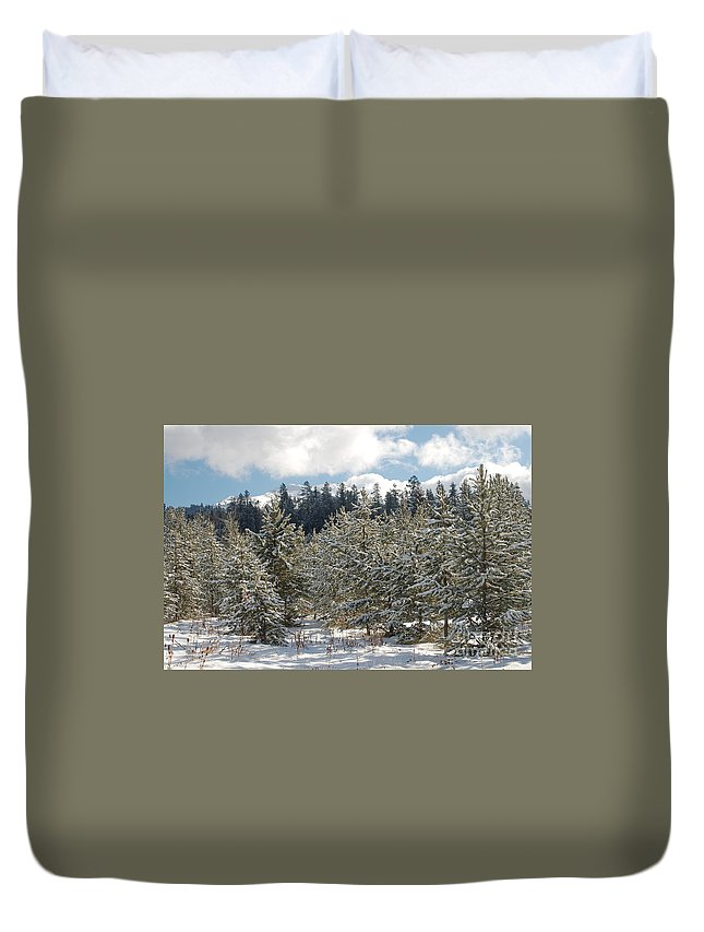 Snow Duvet Cover featuring the photograph Snowy Forest by Lucy Bounds