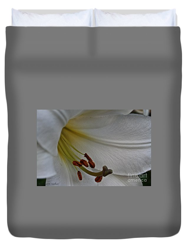 Outdoors Duvet Cover featuring the photograph Snowy Lily by Susan Herber