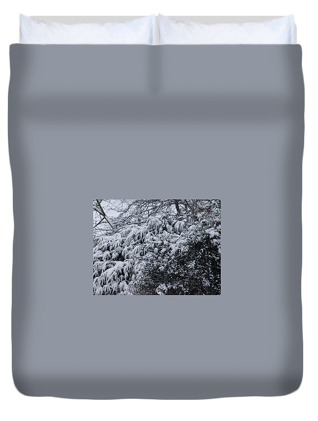 Snow Duvet Cover featuring the photograph Snowy Winter Branches by Ashok Patel
