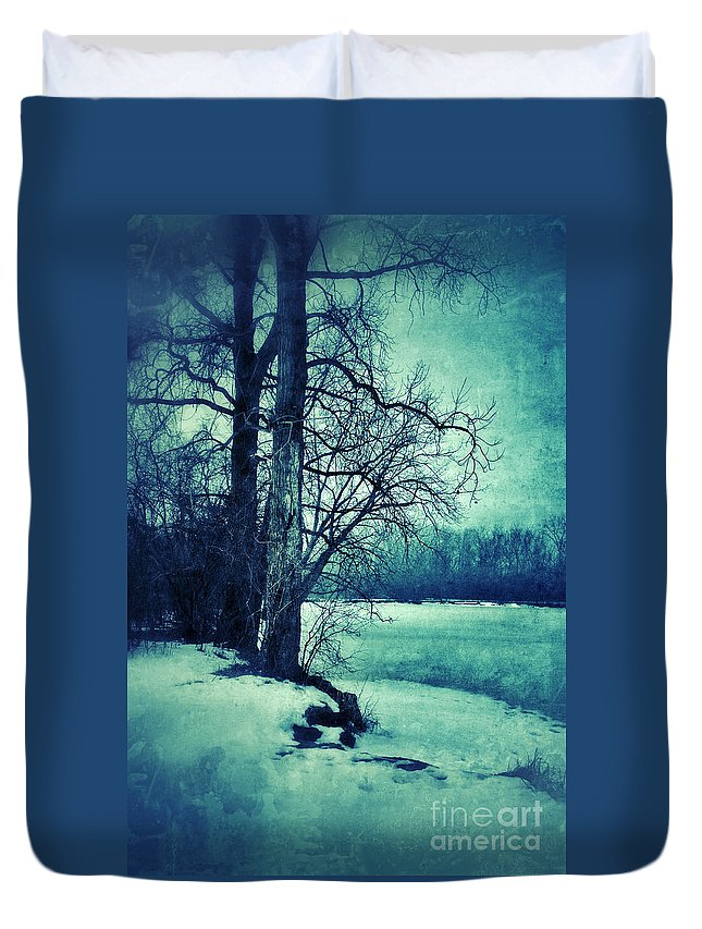 Woods Duvet Cover featuring the photograph Snowy Woods By A Lake by Jill Battaglia