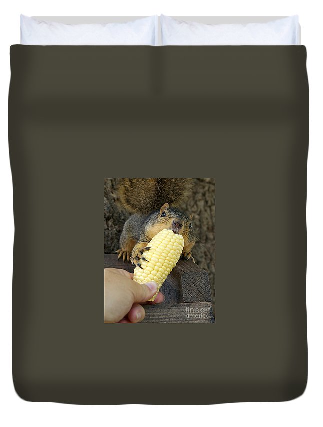 Squirrel Duvet Cover featuring the photograph So Much Sweet Corn So Little Time by Lori Tordsen