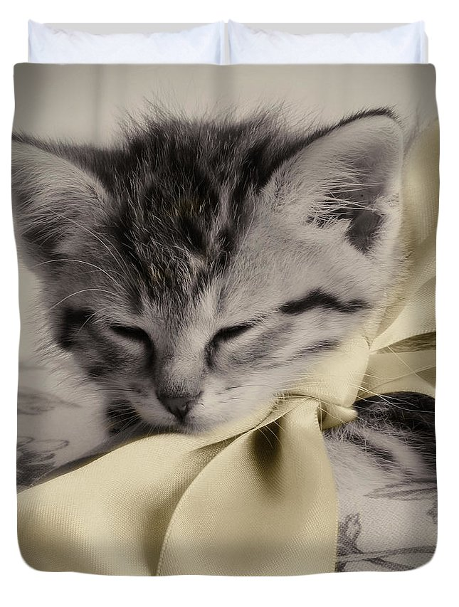 Kitten Duvet Cover featuring the photograph Soft by Amy Tyler