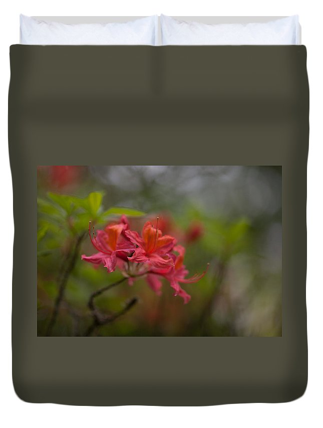 Rhodies Duvet Cover featuring the photograph Soft Red Rhodies by Mike Reid