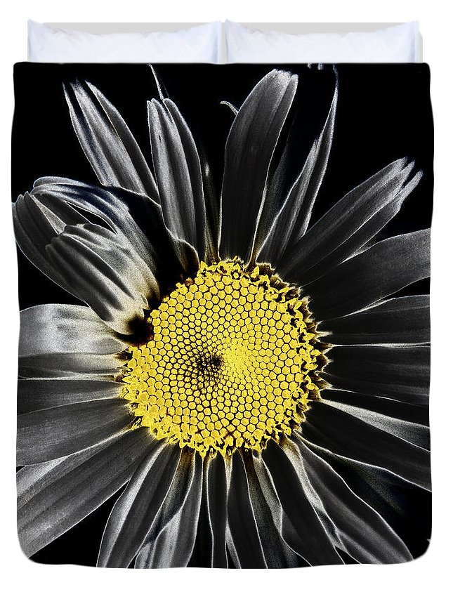 Daisy Duvet Cover featuring the photograph Solarized Daisy by David Patterson