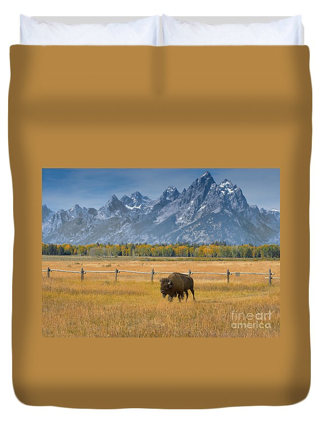 Grand Teton Duvet Cover featuring the photograph Solitary Moments by Sandra Bronstein