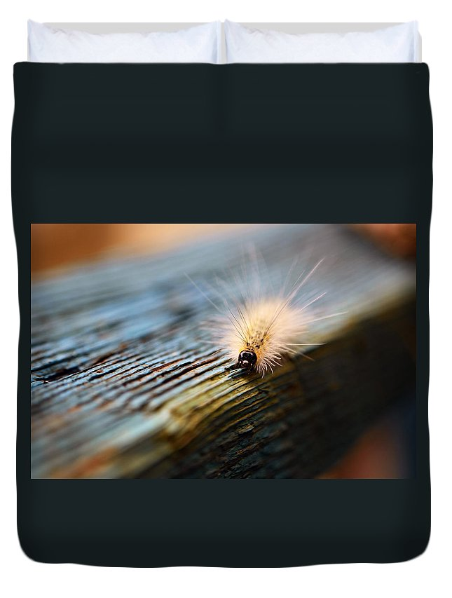 Caterpillar Duvet Cover featuring the photograph Something Wicked This Way Comes by Lori Tambakis