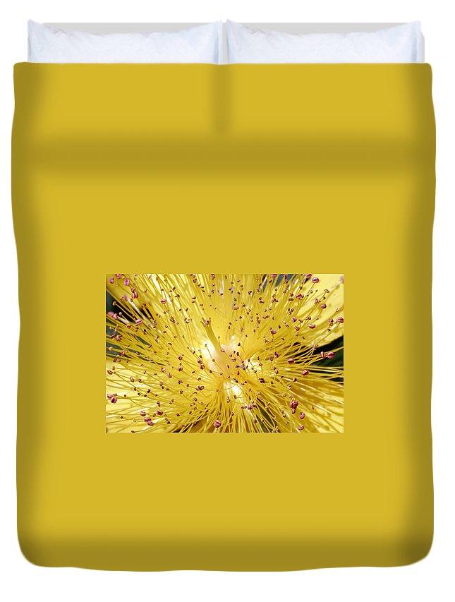 Flowers Duvet Cover featuring the photograph Sons Of Light by Munir Alawi
