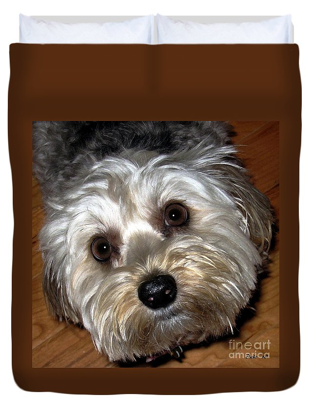 Dogs Duvet Cover featuring the digital art Sophie by Dale  Ford