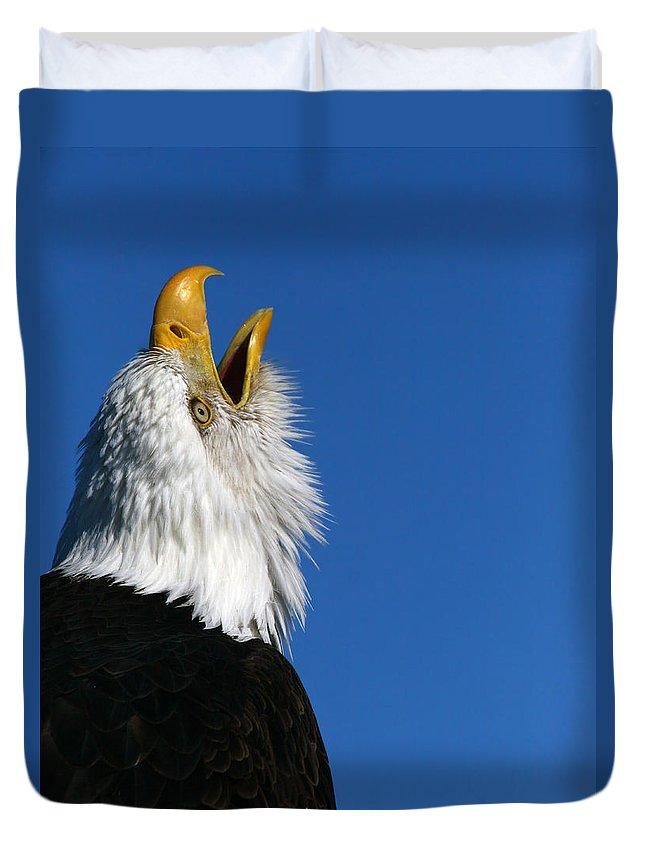 Alaska Duvet Cover featuring the photograph Sounding Off by Doug Lloyd